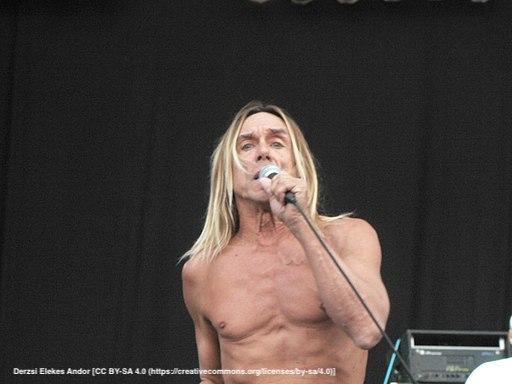 Iggy_and_the_Stooges_-_Sziget_Fesztivál,_2006.08.15_(5)